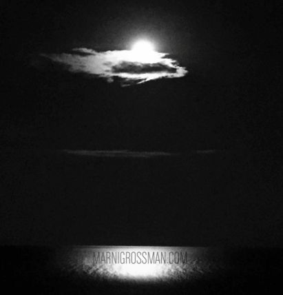 Blue Moon in Toronto  2015 #marnigrossmanphotography #marnigrossman #marnigrossmantoronto