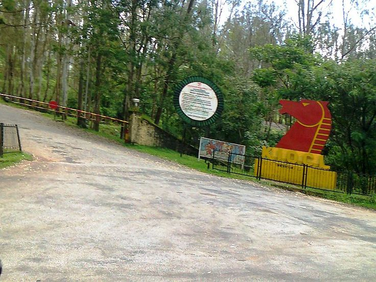File:Kudremukh Main Road.jpg