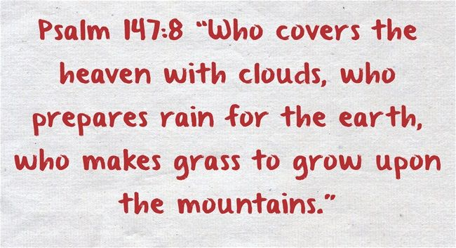 Bible Verses About Nature