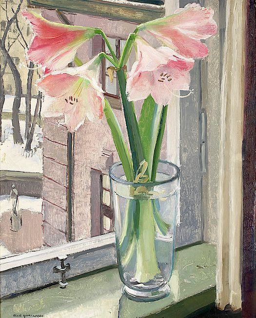 OLLE HJORTZBERG - Amaryllis in the Window