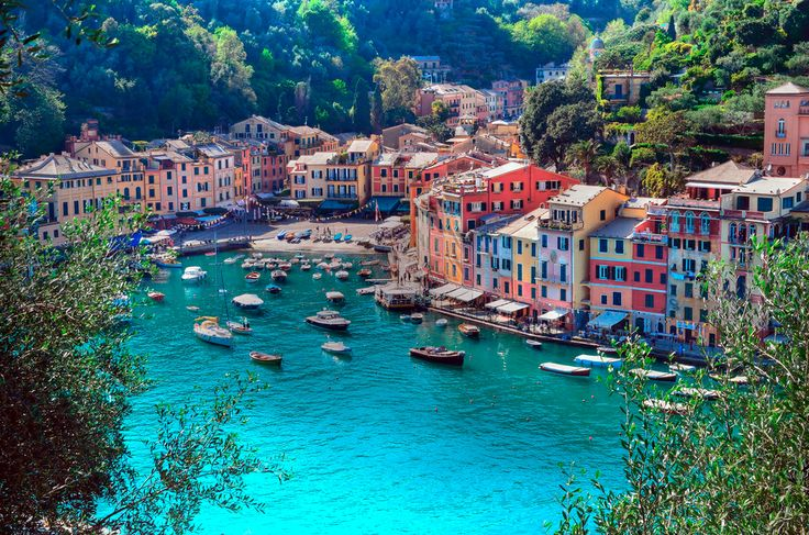 How about a lovely Boat trip to the lovely Portofino?