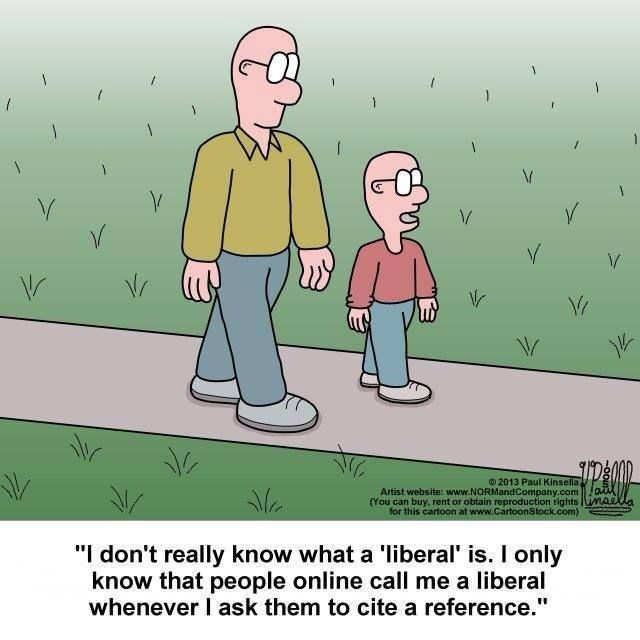 Definition of a liberal