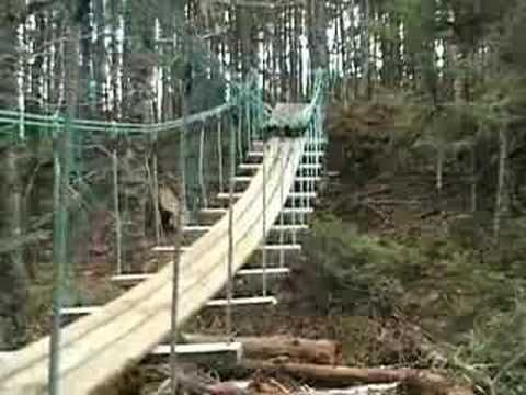 how to build a low cost suspension bridge. We would need nets along the sides for safety.