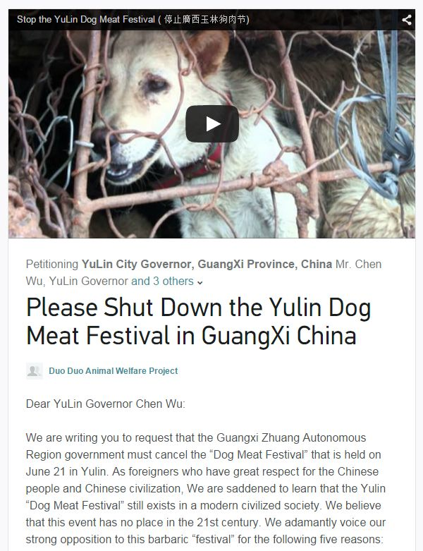 Video Of Killing Dogs In China