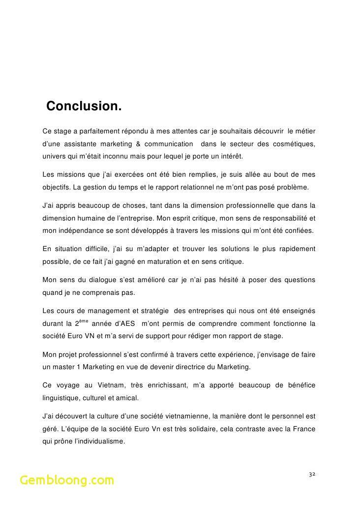 15+ conclusion rapport de stage bac pro | identite ...