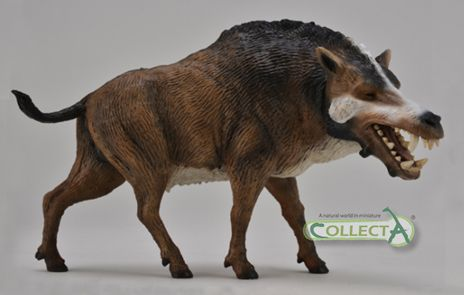 The 1:20 Daeodon model from Collecta, a superb model of an ...