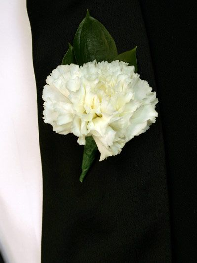OPTION 1 and for 2: white carnation with baby's breath. The groom would have two...everyone else with one.
