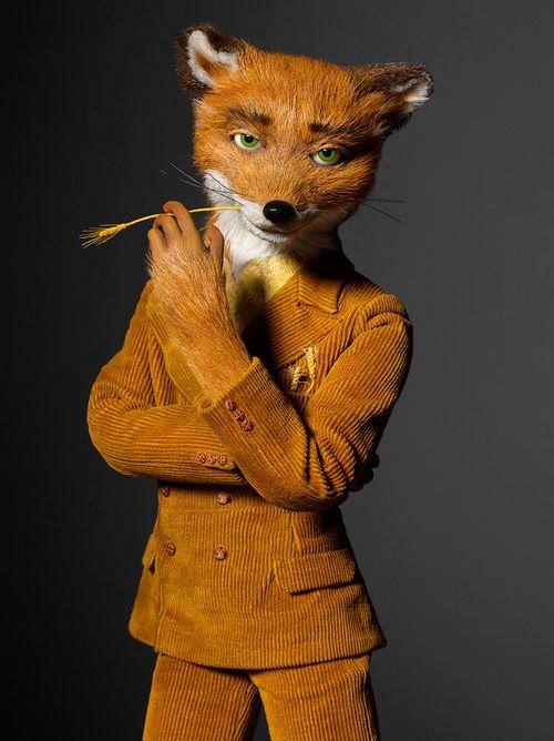 Fantastic Mr. Fox                                                       …