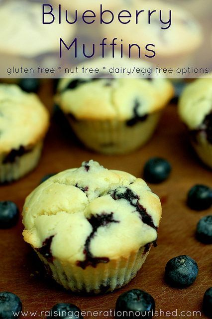 Blueberry Muffins :: Gluten Free, Nut Free, Egg/Dairy Free Options | Raising Generation Nourished