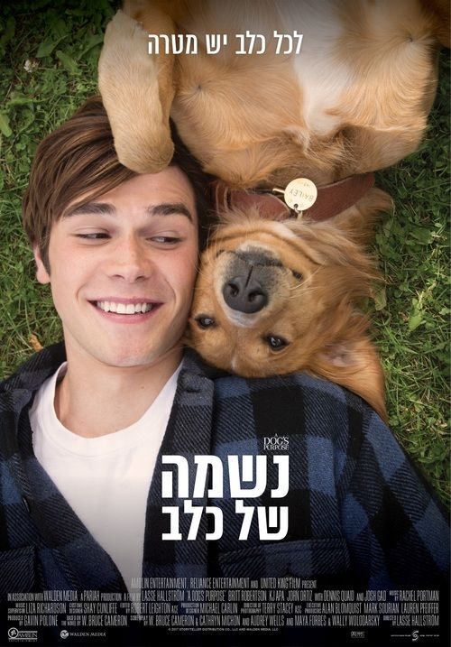 Watch A Dog's Purpose Full-Movie