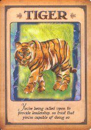 animal spirit meanings images   Where to Buy · Amazon.com · Amazon.co.uk · Amazon.ca
