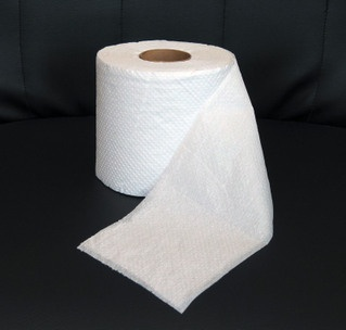 stock up on toilet paper and large rubbish bags for emergency use