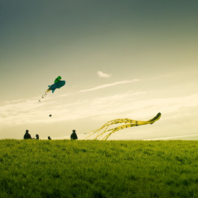 Kite Sky by ►CubaGallery, via Flickr