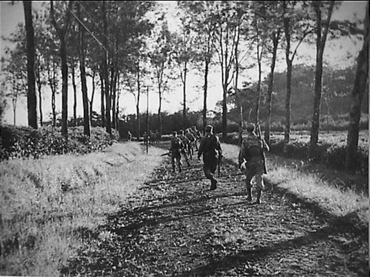 Politioneel optreden. Bandoeng-sector 21-7-1947. Langs de thee van Tjilimoes wordt opgerukt in de richting Joebang.