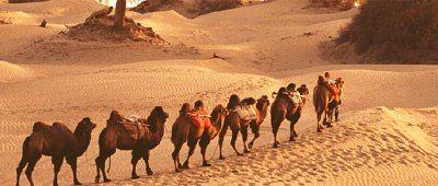 caravane dans le désert de Taklamakan