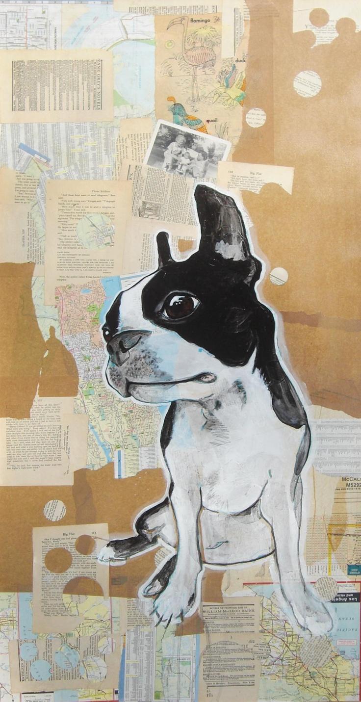 """waffle"" boston terrier dog portrait"