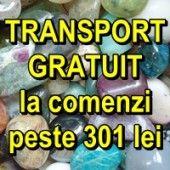 OFERTA 4: TRANSPORT GRATUIT