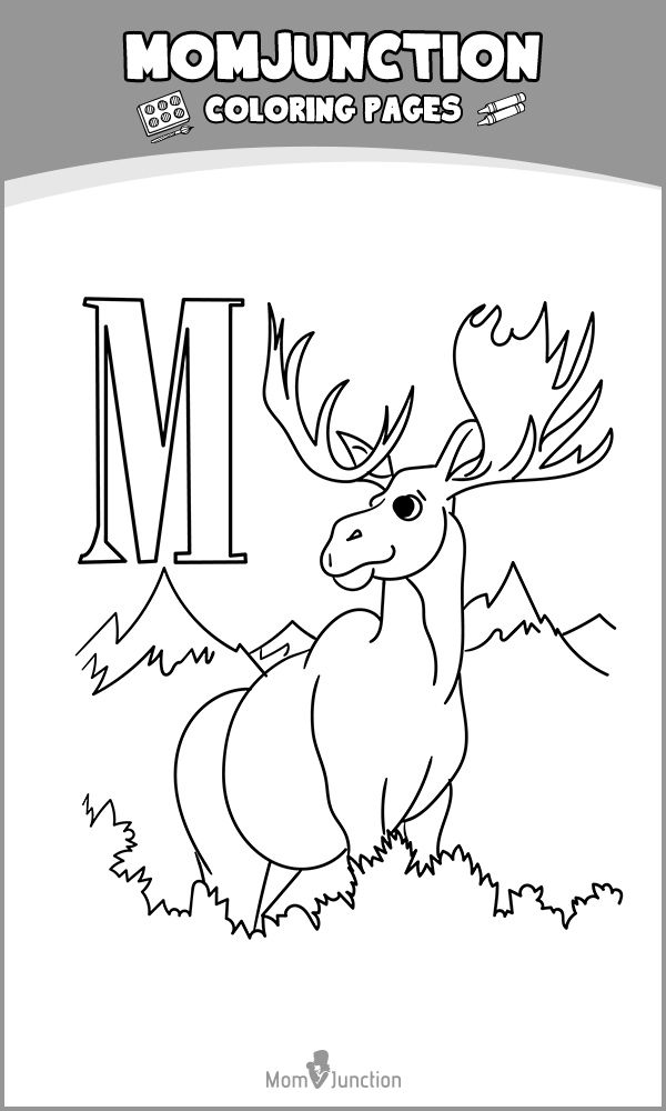 Top 10 Moose Coloring Pages For Your Kids