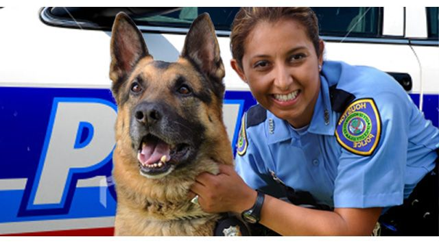 K9 Police Officer Career, Job, and Training Information