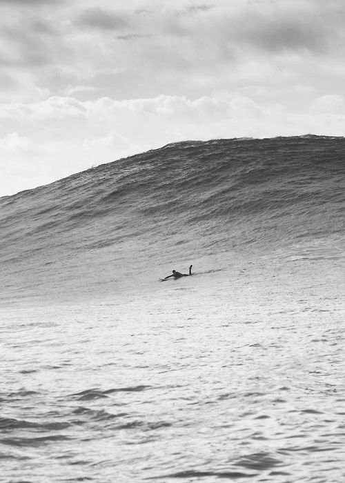 Surfer about to paddle in to a huge wave - via www.murraymitchell.com