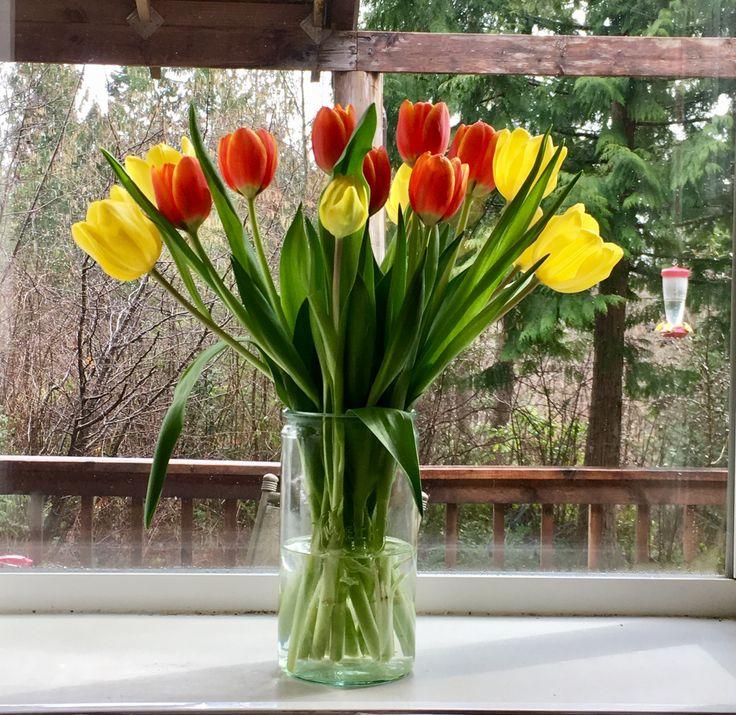 Tulips in a Weck Jar