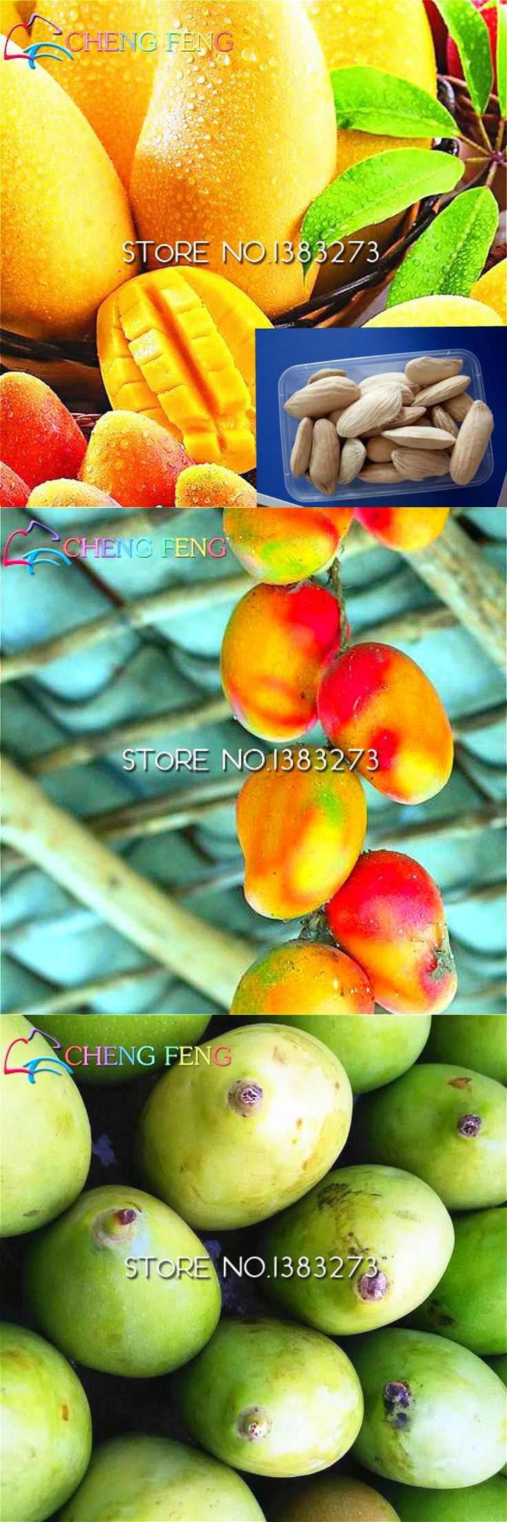[Visit to Buy] Sale 1 Pcs/bag Giant And New Mango Seeds Mini Mango Tree Bonsai Seeds Organic Fruit Pot Diy Plant Seed For Home Garden Sementes #Advertisement