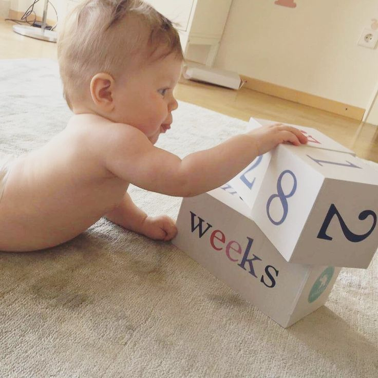 Milestone blocks to track baby's age in weeks, months, years and grade. Also track your pregnancy in how many weeks or months.