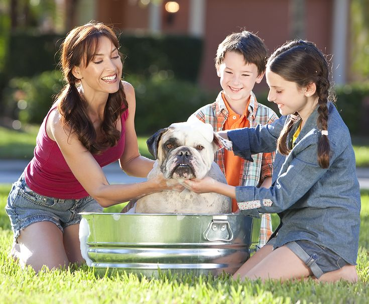 Mother Son & Daughter Family Washing Pet Dog In A Tub