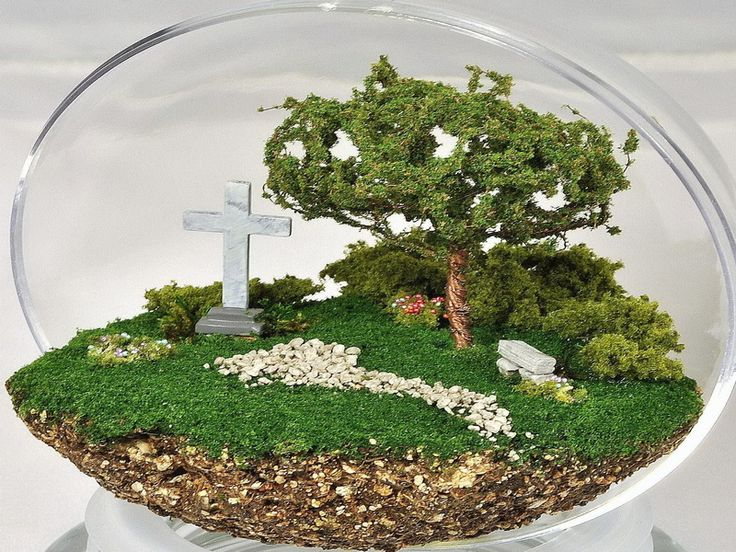 Large Glass Terrariums for Sale | 18 Photos of the How to Choose Beautiful Terrariums for Sale
