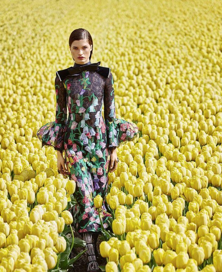 Julia-Van-Os-by-Daniel-Riera-for-Harpers-Bazaar-US-August-2017-6-760x933.jpg