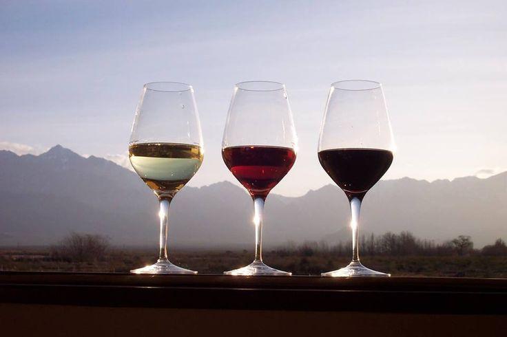 wine tasting at Manzwine..... you will enjoy