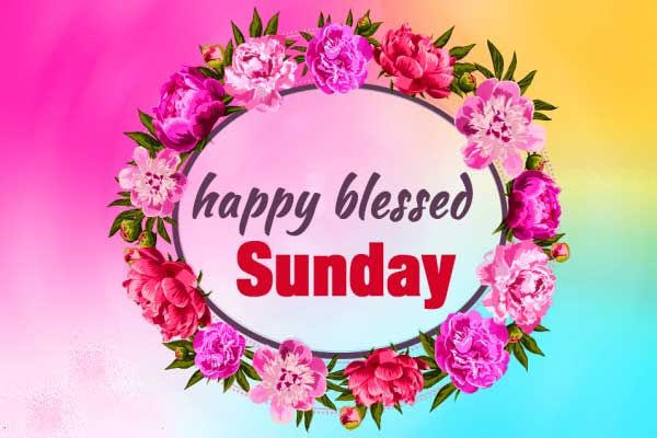 312+ Happy Sunday Quotes Wishes Images HD Download