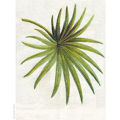 Anali's Palmetto design is available on natural white linen guest towels.