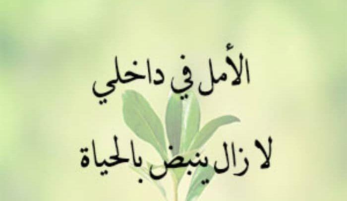 خواطر عن الحياة والأمل جميلة ومبهجة ليوم مشرق Arabic Calligraphy Calligraphy Home Decor Decals