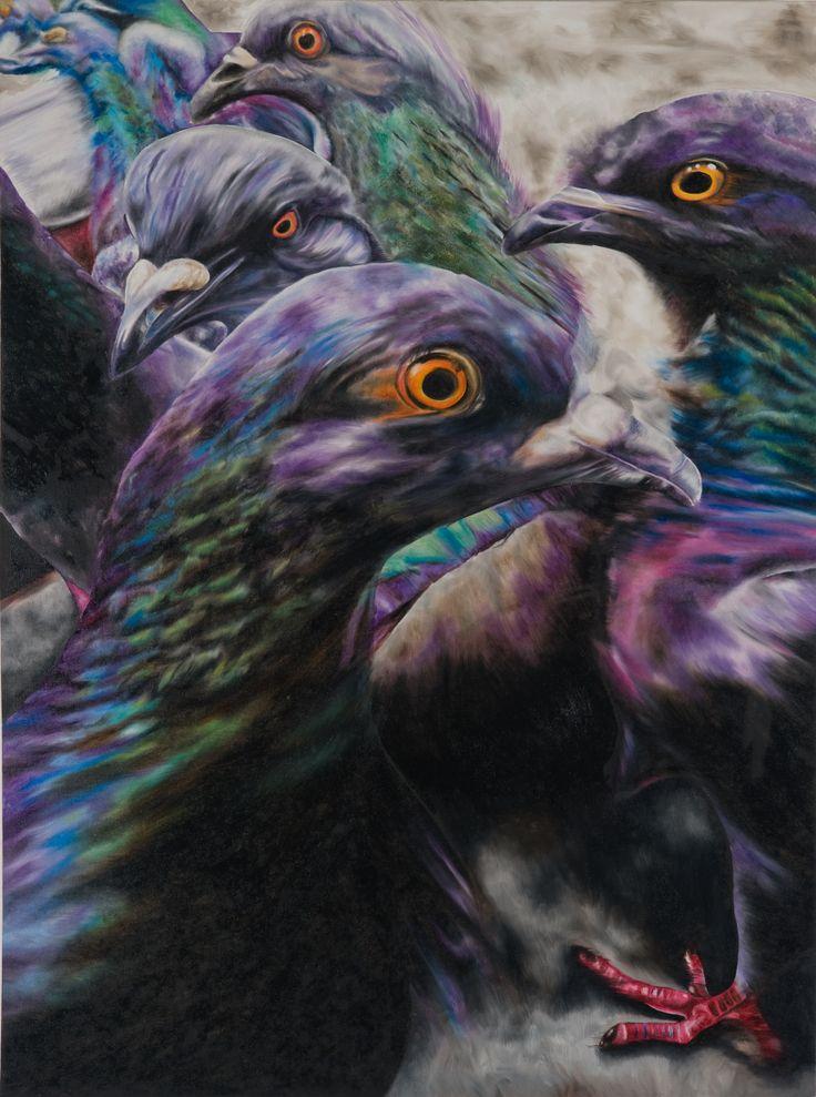 Wild Pigeons. www.natalietoplass.com