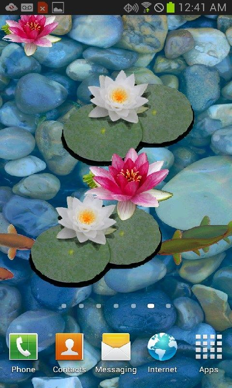 Best 25 free moving wallpapers ideas on pinterest for Koi pond screensaver