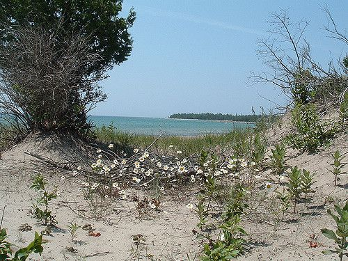 https://flic.kr/p/6WrGnn | Dunes on Lake Huron, Manitoulin Island | View of Lake Huron from the dunes, Carter Bay, Manitoulin Island, Canada, August 2003
