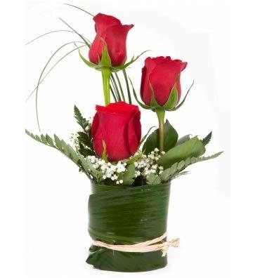 Pequeño centro de mesa de rosas