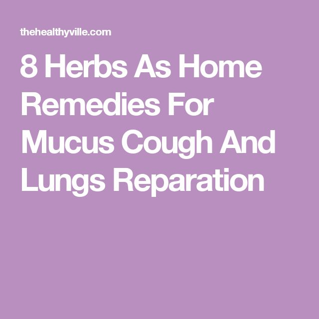 8 Herbs As Home Remedies For Mucus Cough And Lungs Reparation