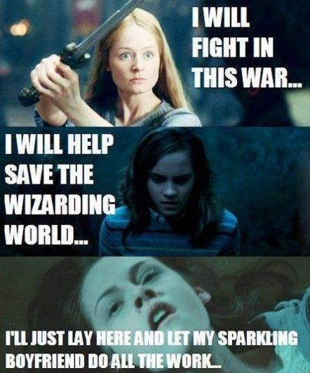 """LOTR vs. Harry Potter vs. Twilight...  Love it! (""""Occasionally I will 'help' by making things 1000 times more difficult than they already are."""")"""