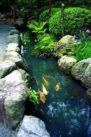 Resultado de imagem para jardins japoneses imagens