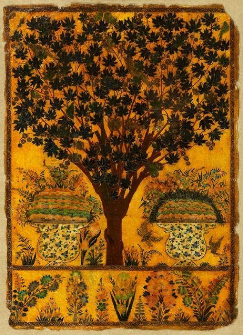 Book Cover Watercolor Paintings : Best images about historische bomen illustraties on