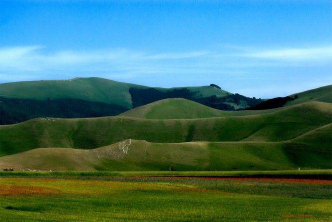 Scorcio-sulla-piana-di-Castelluccio-al-tramonto-a28585463