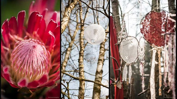 bohemian bruiloft wedding, proteas, dream-catchers