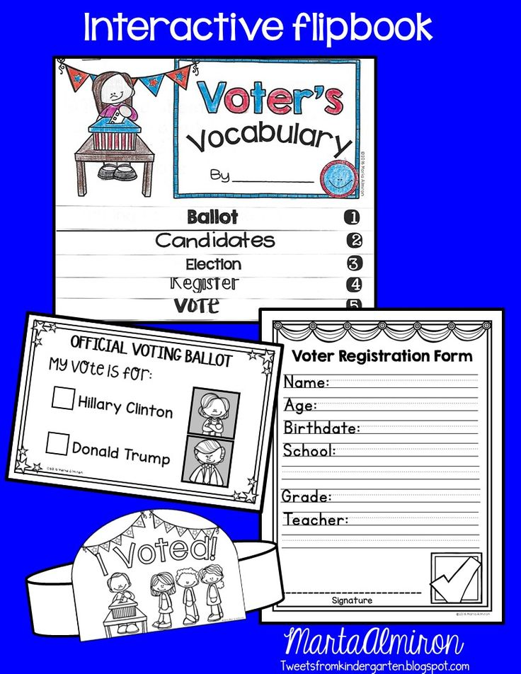 Election  Unit  Voter Registration Form Voting Ballot And