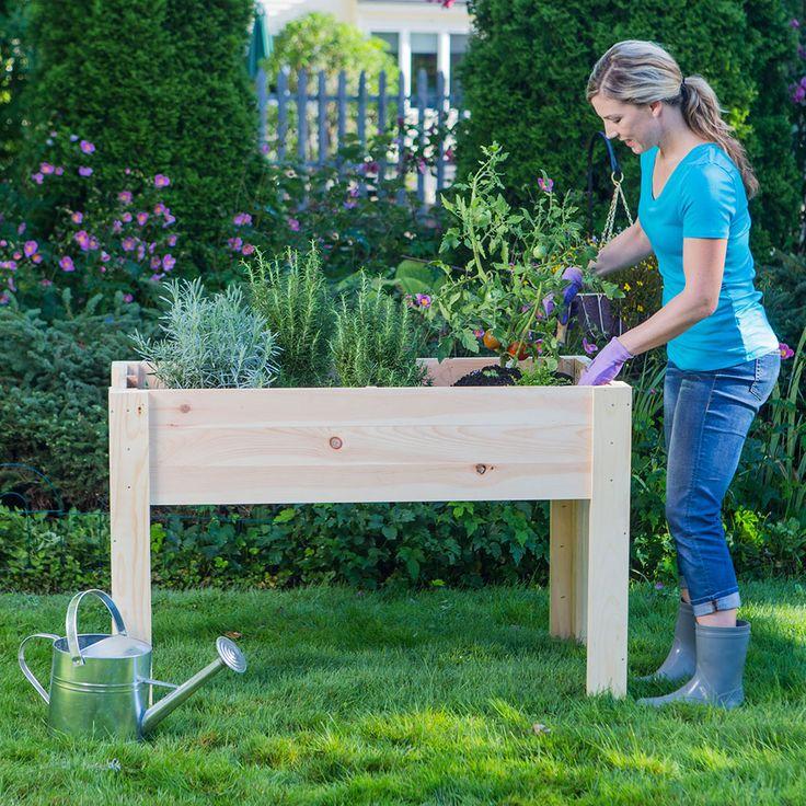 Raised Garden Beds vs. Elevated Garden Planters
