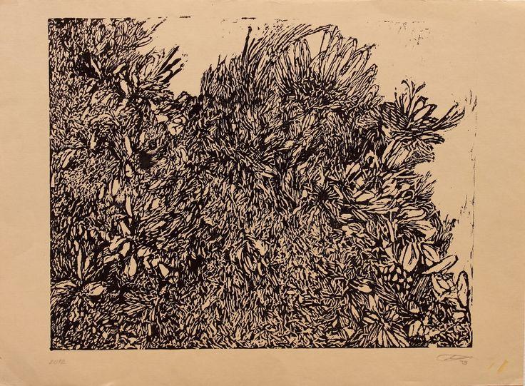 <<Eugenias>> Linografía. 1/4 de papel. 2012. (DETALLE)