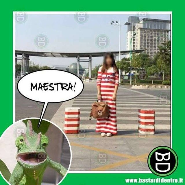Una nuova allieva fenomenale! #bastardidentro #camaleonte #vestito #ipnoticamentebastardidentro www.bastardidentro.it