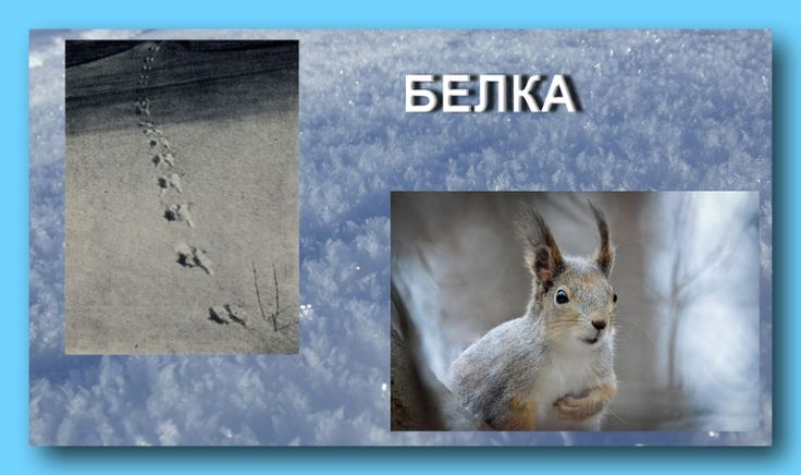 Категория (зима) в дневнике Савицкая Татьяна (fatsia0) (fatsia0) – BabyBlog.ru - стр. 3