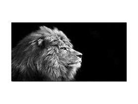 obraz glasspik Animals #blackredwhite #brw #homestyle #dodatki #roomdecor #instadeco #homeinspirations #design #swiecznik #homestyle #dekoracje #dekoracjewnetrz